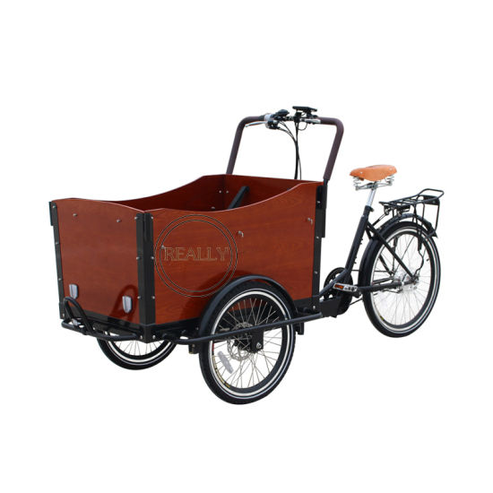 3 Wheels Electric Cargo Bikes Food Delivery Tricycle for Sale