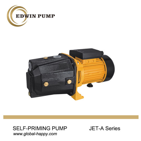 Self-Priming Water Pump pictures & photos