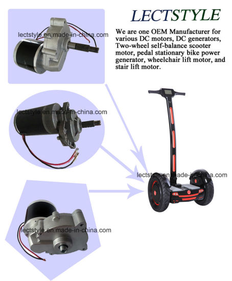 24V 250W DC Two-Wheel Self-Balance Scooter Motor