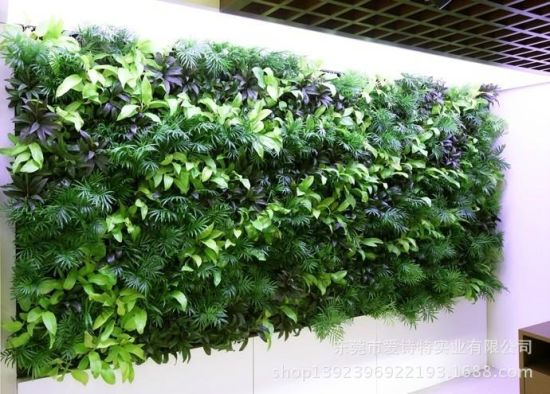 Artificial Plants and Flowers of Vertical Garden Gu-923748423