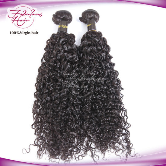 Wholesale 100% Human Hair Wig Curly Virgin Indian Hair pictures & photos