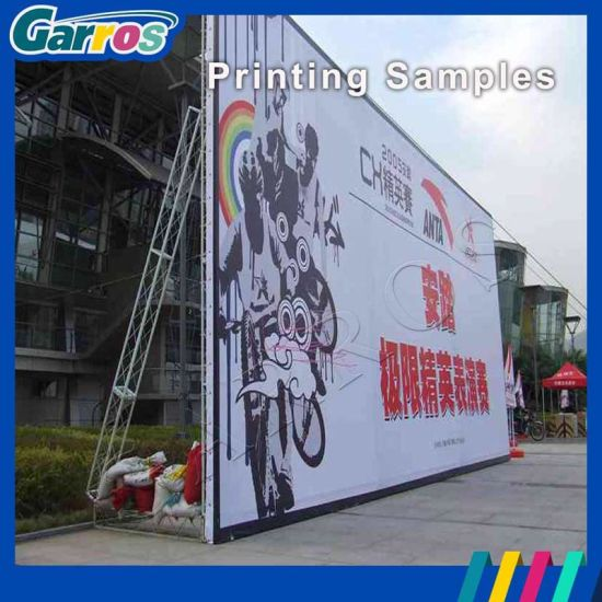 6feet Digital Wide Format Tarpaulin Banner Eco Printer pictures & photos