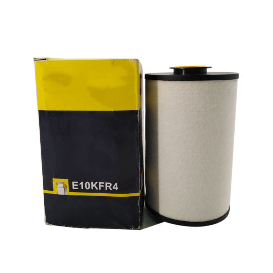 High Quality Auto Fuel Filter E10kfr4 D10 pictures & photos
