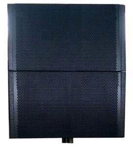 PRO Audio DSP Active Plywood Cabinet Neodynium Drivers Line Array Speaker