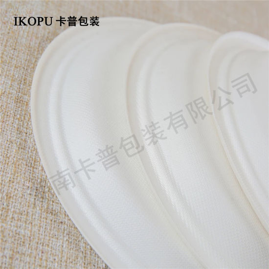 Compostable Bagasse Sugarcane Biodegradable Paper Plates