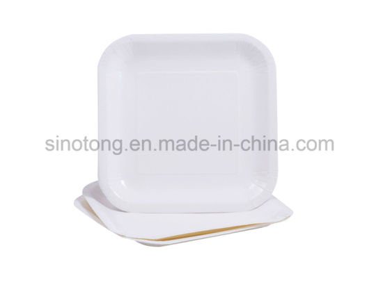 Disposable Customized White / Kraft Paper Plates  sc 1 st  CHANGSHA SINOTONG PPC CO. LTD. & China Disposable Customized White / Kraft Paper Plates - China Paper ...