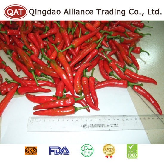 Chinese Fresh Red Chili with Best Price pictures & photos