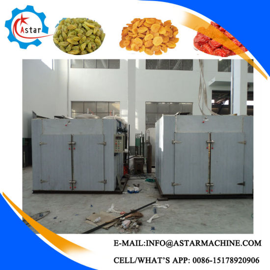 More Than 10 Years Experience Hot Air Dryer for Fruit and Vegetables pictures & photos