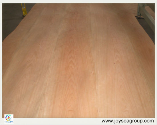 AA/Bb Grade Cherry Face/Back Phenolic Glue Plywood Sheet pictures & photos