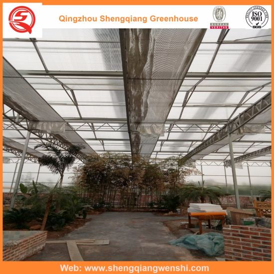Agriculture/Commercial Polyethylene Film Tunnel Green House for Strawberry/Rose
