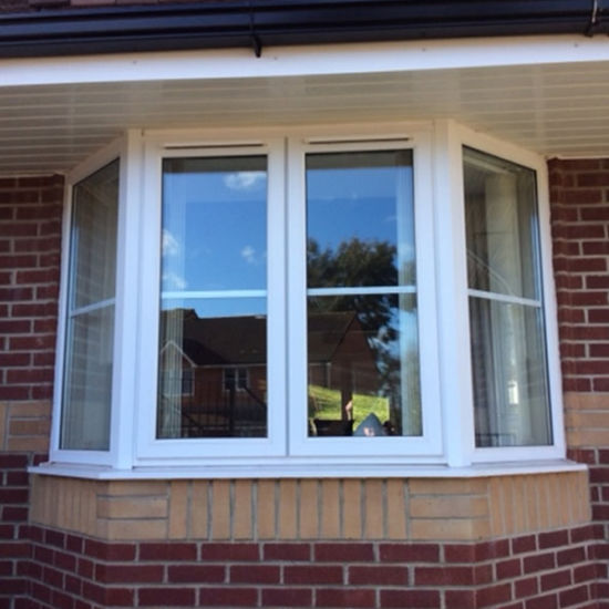 Vinyl/UPVC Double Hung Window Replacement for Modern House