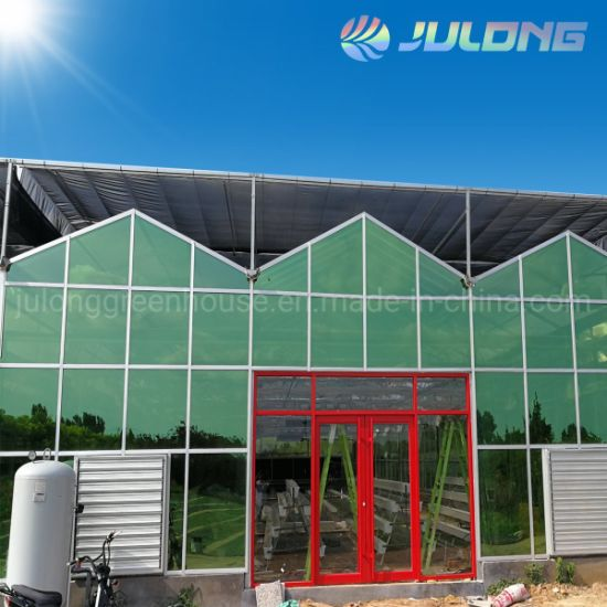 Venlo Single Layer Glass Multi Span Greenhouse for Hydroponic Growing System
