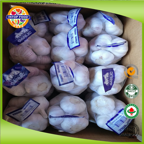 2019 White Garlic/Normal White Garlic/Pure White Garlic in Hot Sale