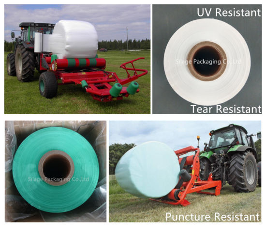 Multi Layer Blown Green Color Silage Wrap Film Silage Film for EU Countries pictures & photos