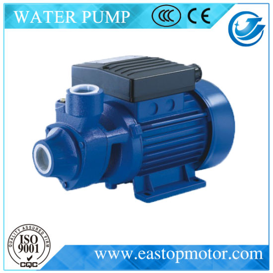 Pkm Water Pump for Agricultural Irrigation with 220V Voltage pictures & photos