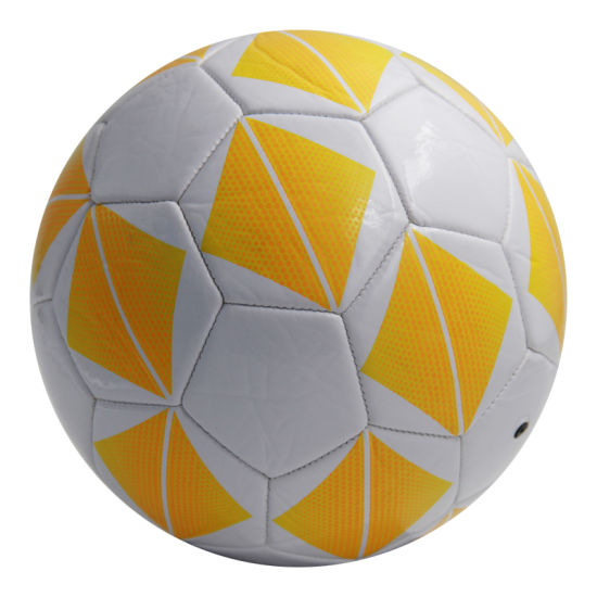 Standard Size PVC Material Home Fitness Sports Ball pictures & photos