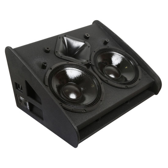 Vtx M22 Dual 12 Inch Stage Monitor Powerful Full Range PRO Audio Speaker System