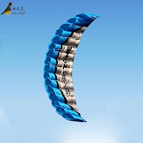 Sale High Quantity 2.5m Dual Line Soft Stunt Power Kites