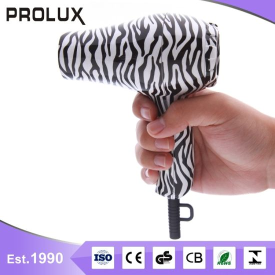 Ronggui Wholesale New Style Mini Hotel Hair Dryer Rg8006