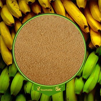 X-Humate Brand Amino Acids 80% Agriculture Professional Product