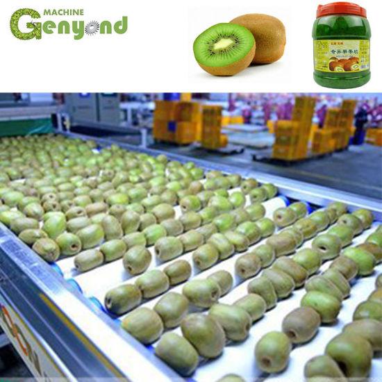 China Yellow Kiwi Fruit Jam Processing Plant With Grading Machine China Kiwi Fruit Jam Making Machine Kiwi Fruit Paste Processing Line