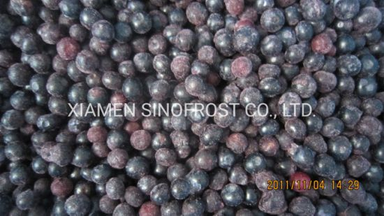 Frozen Cultivated Blueberries, IQF Blueberries, Frozen Blueberries, IQF Bilberry, Frozen Bilberries, . IQF Cultivated Blueberries, IQF Wild Blueberries