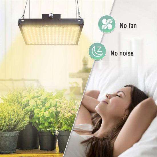 Full Spectrum Grow Light Kit For Indoor, Outdoor Grow Lights