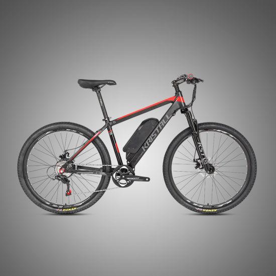 Wholesale 250W Aluminum Alloy Bicicleta 29er Mountain Electric Bike