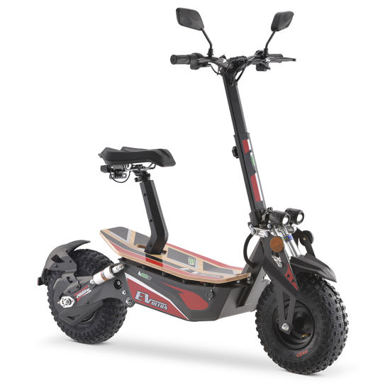 Citygreen Foldable Lithium Battery Electric Scooter 1600W