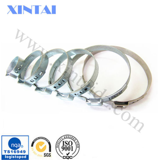 ISO 9001 Customized Hot Sale Stainless Clamp Spring pictures & photos