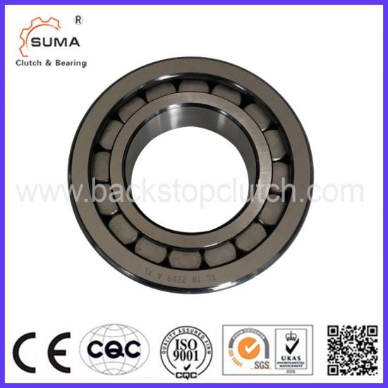 Multirow Cylindrical Roller Bearing (SL14) pictures & photos