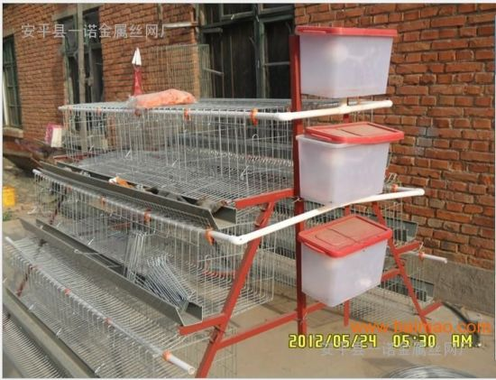 New Design Battery Chicken Layer Cage Rabbit Cage