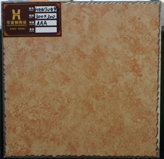 Ceramic Glazed Floor Tile Living Room Tile 300 pictures & photos