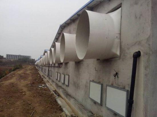 China Poultry Fan Pig Barn Fan Farm Fan Farm Cooling