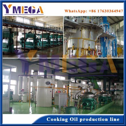 China Manufacturer Supply Turkey Vegetable Oil Factory Construction pictures & photos