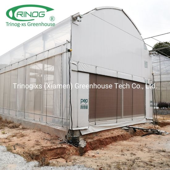 Gothic blackout greenhouses single tunnel series for hemp planting