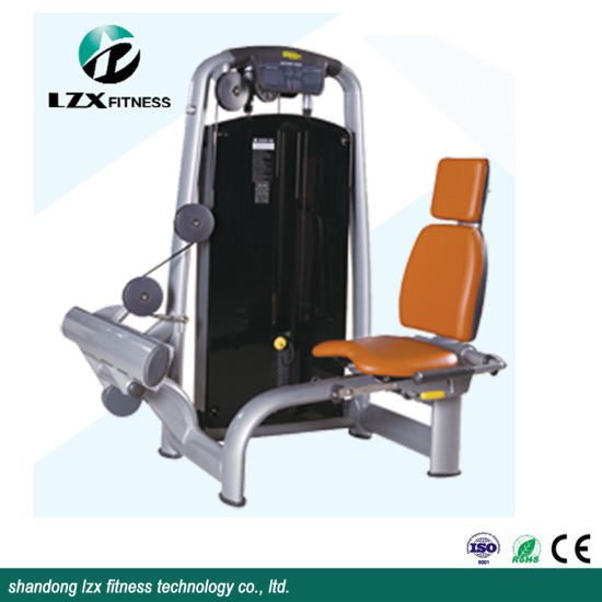 Rotary Calf/ New Indoor Commercial Fitness Machine Made in China/Gym Equipment Machine Wholesale Fitness