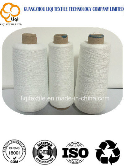 Spun Core Polyester Sewing Thread 20s\2\3\4\5\6 for Bag Closer pictures & photos