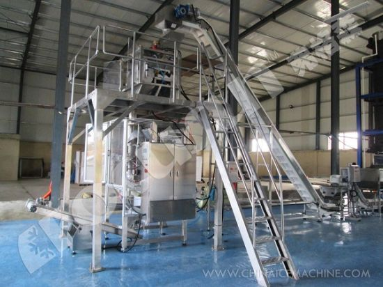 China Leader Tube Ice Machine 30 Tons Per Day pictures & photos