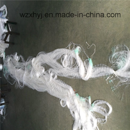 0.20mmx45mmsqx20mdx100m Nylon Monofilament Fishing Net pictures & photos