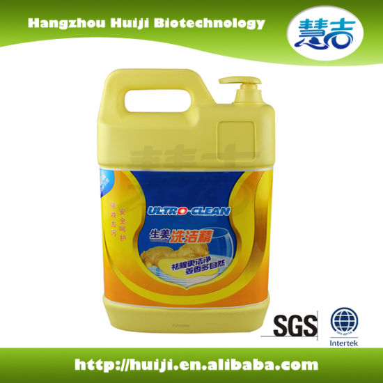 New Anticeptic Formula Dishwashing Liquid pictures & photos