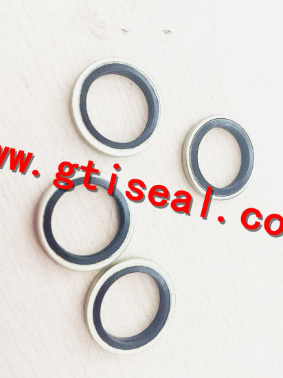 China ISO/Ts16949/ISO9001 Rubber Metal Combination Washers Bonded ...