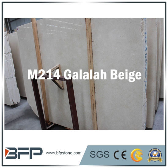 Elegant Marble Construction Material for Building Wall or Floor Decoration pictures & photos