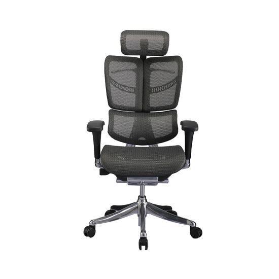 Modern High Quality Mesh Back Ergonomic Office Chair