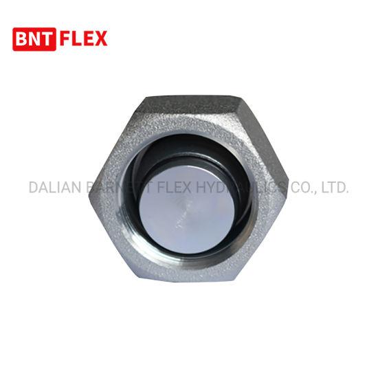 1/2 Inch Hydraulic Hose Fittings Hot Dipped En10241 Welding Hex Nipple DIN Standard Male Nipple