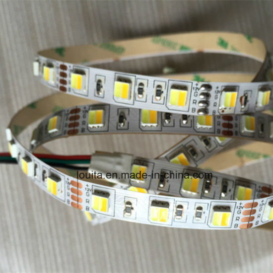 Warm White & White Two Chips in One 5025 LED Strip pictures & photos