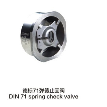 Stainless Steel DIN 71 Sring Check Valves pictures & photos