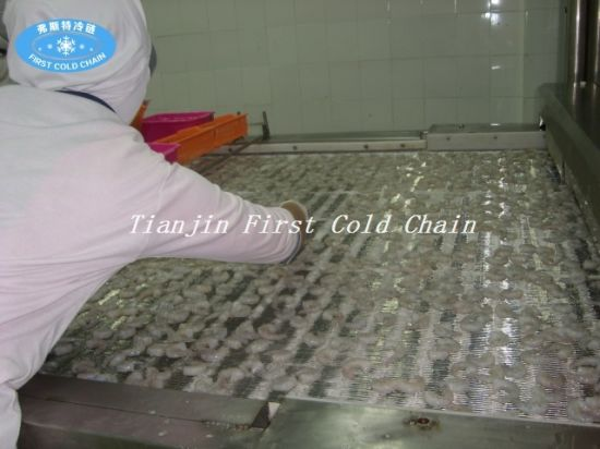 Tunnel Quick Freezer for Seafood Factory Directly Supply pictures & photos