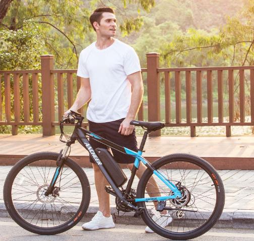 High Performance Mountain Electric Bike with En Standard