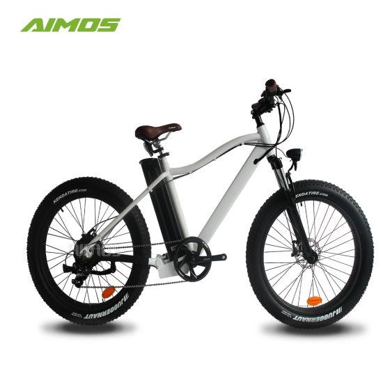 bf206d15107 China E Bike 750 Watt Electric Bike Fat Ebike - China Bike Electric ...
